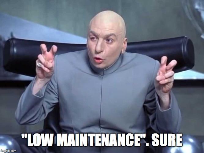 low maintenance meme what clients mean