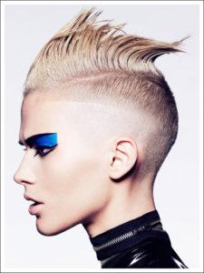 errol Douglas barber inspired shot