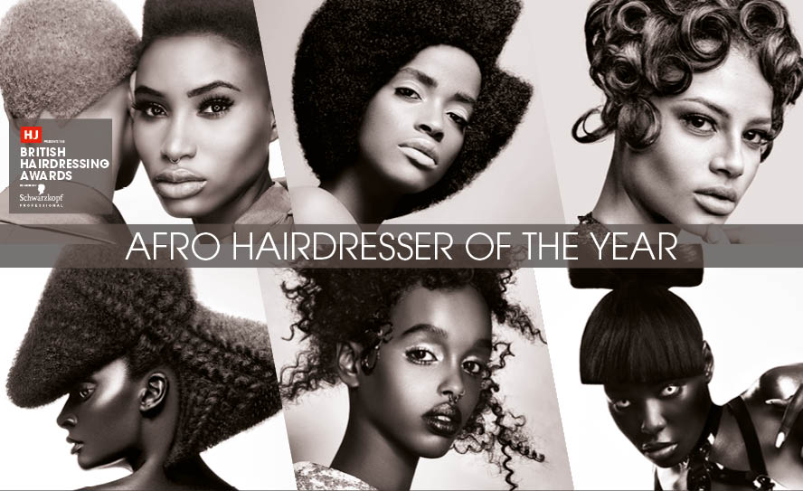 Afro Hairdresser of the Year Past Winners Image