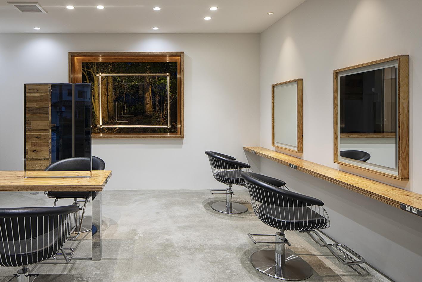 Takara Belmont salon design