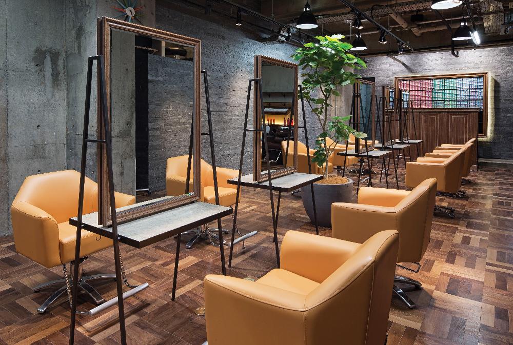 takara belmont morb new styling chair